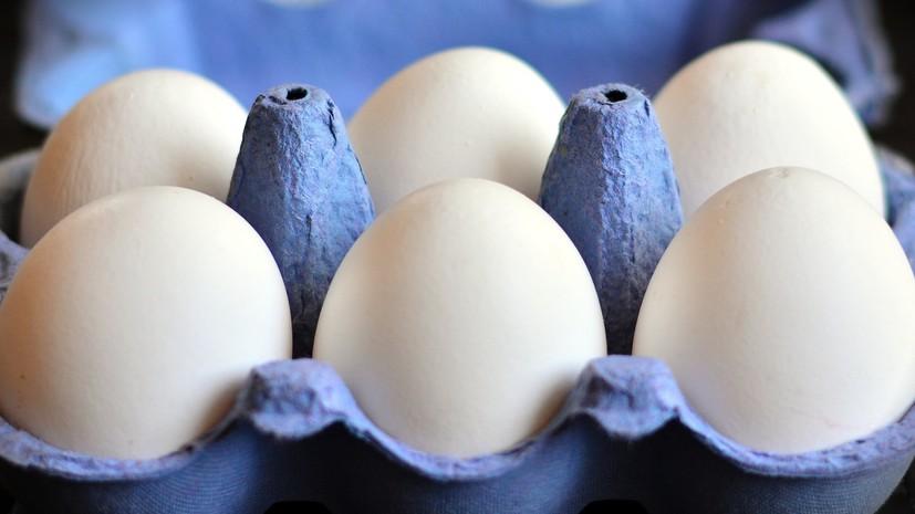 Катар снял ограничение на ввоз ряда продуктов птицеводства из России
