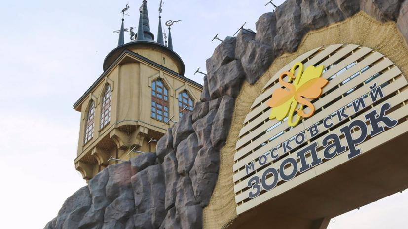 В Московском зоопарке рассказали о планах по празднованию 155-летия
