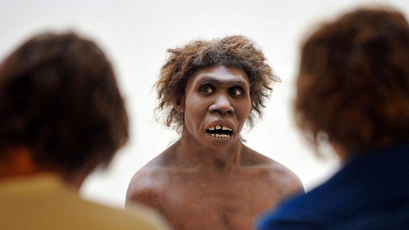 Доисторические хищники: учёным стал известен рацион неандертальцев