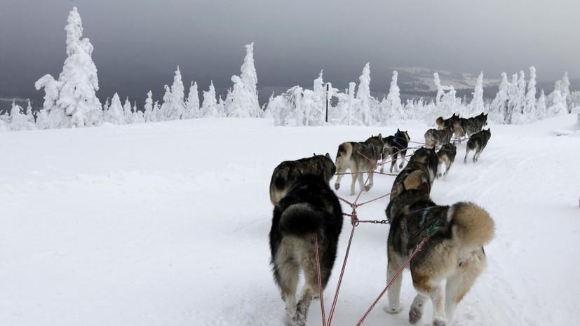 Обсидиановый след: древние жители сибирской Арктики ездили на «ярмарки» за сотни километров