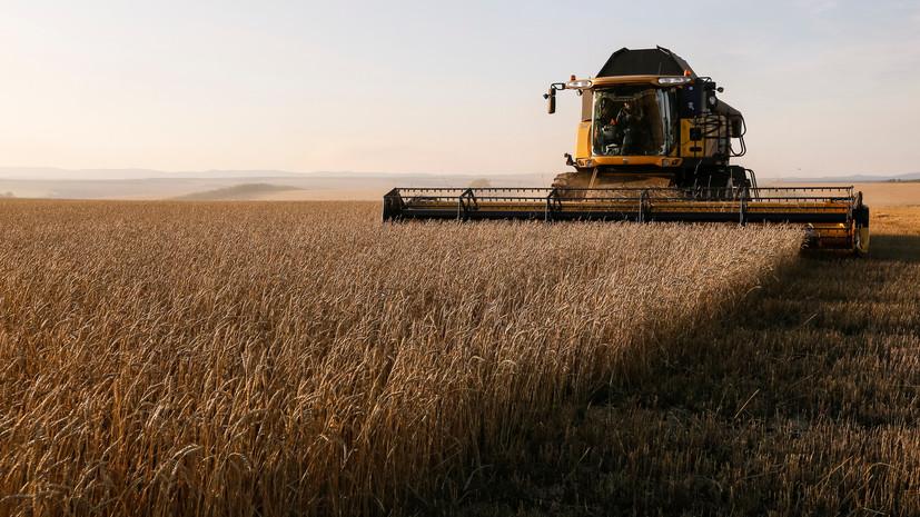 Росстат повысил оценку урожая зерна до 113 млн тонн в 2018 году