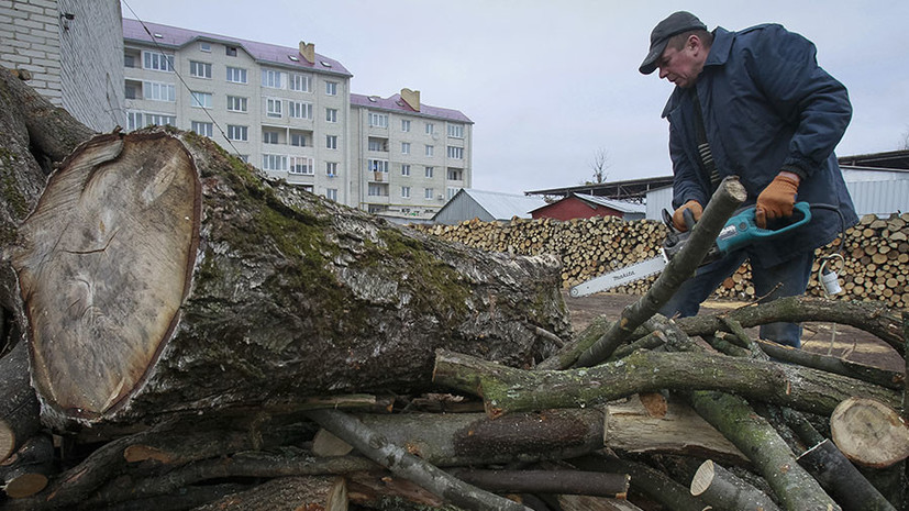 «В позапрошлый век»: в Раде заявили об отказе украинцев от газа и переходе на дрова