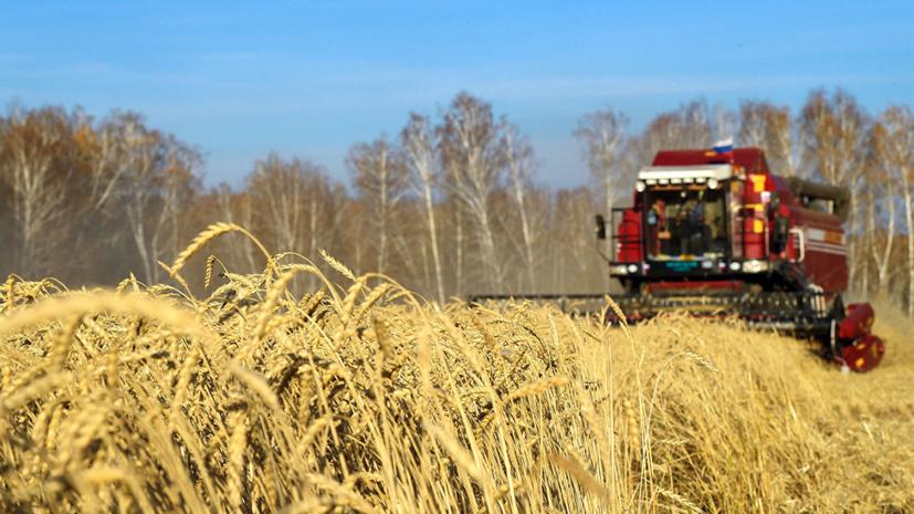 В Росстате сообщили о росте урожайности сельхозкультур