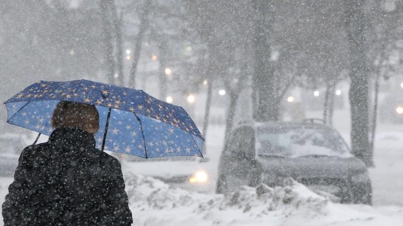 В МЧС предупредили о мокром снеге и ветре в Москве