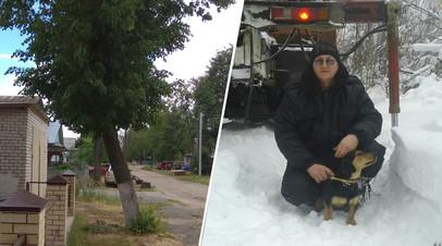 Жителю Нижегородской области грозит тюремный срок за срубленное у дома аварийное дерево