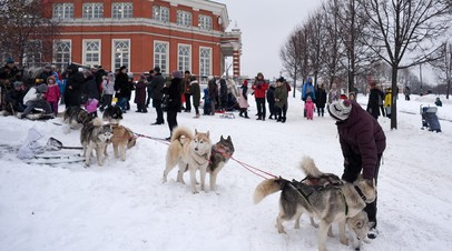 Более 35 млн человек посетили парки Москвы за зиму
