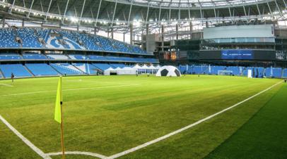 В «Динамо» рассказали, когда газон на новом стадионе будет готов принимать матчи