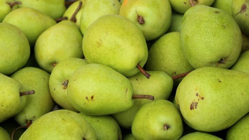 Россельхознадзор ограничит поставки яблок и груш из Белоруссии