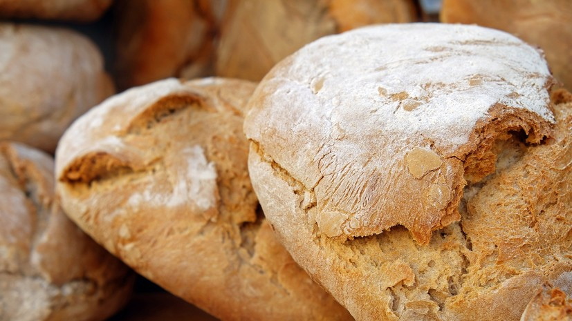 В Удмуртии рассказали о разработке законопроекта «О хлебопечении»