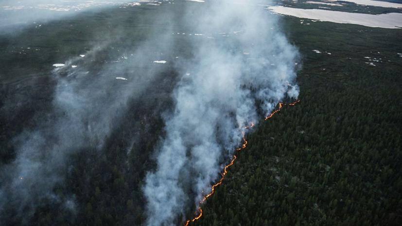 Более 340 человек признаны потерпевшими от пожаров в Забайкалье