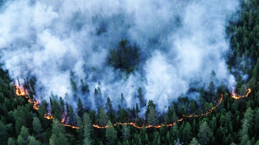 Пострадавшим при пожарах в Забайкалье бесплатно восстановят паспорта