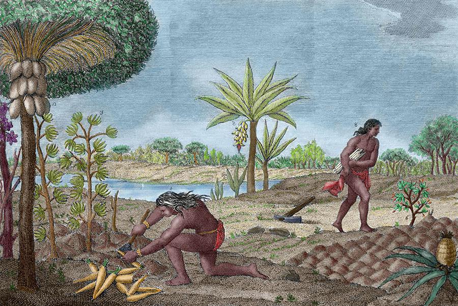 Научный заговор, космический катаклизм и секреты археологии: альтернативная теория о первой цивилизации Америки 5cb8905418356119148b45f3