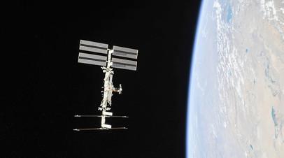Российские космонавты на борту МКС начали выращивать ряску