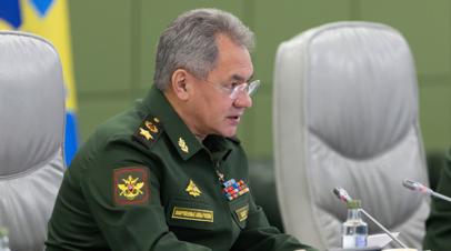 Шойгу отметил важность сотрудничества России и Ирана по Сирии