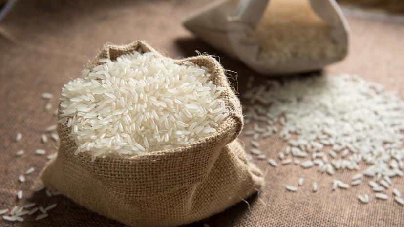 Азиатская диета: японские учёные назвали рис помощником в борьбе с ожирением