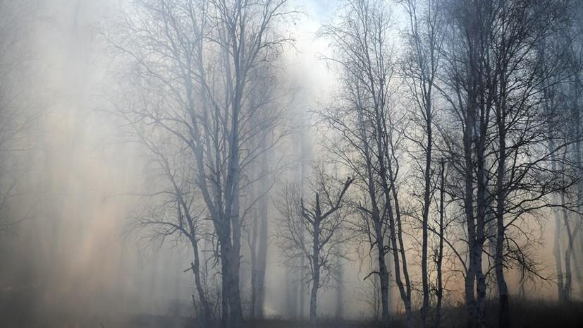 Площадь природных пожаров в Хабаровском крае превысила 950 га