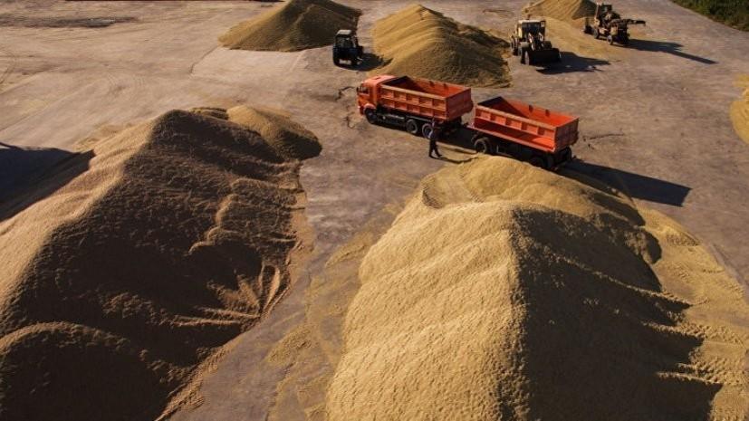 В Подмосковье заявили о росте экспорта сельхозпродукции на 20,5% в I квартале