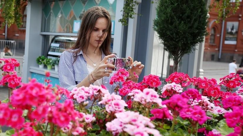 В Москве начали устанавливать композиции международного конкурса «Цветочный джем»