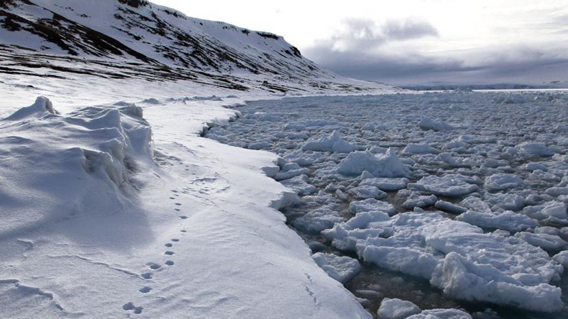 В МИД России прокомментировали риторику США о России в Арктике