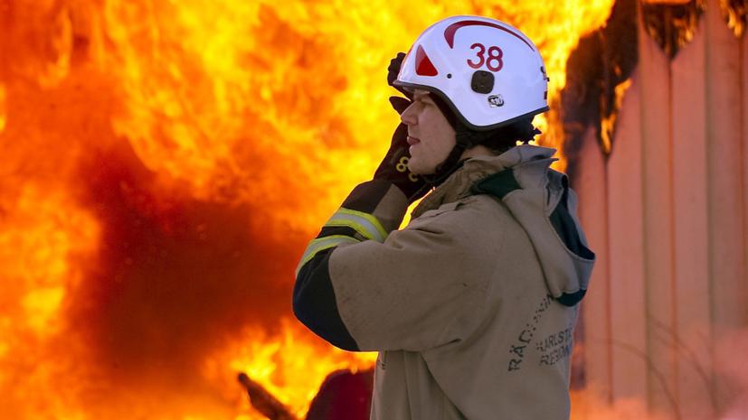 Около 100 тысяч кур погибли из-за пожара в Швеции