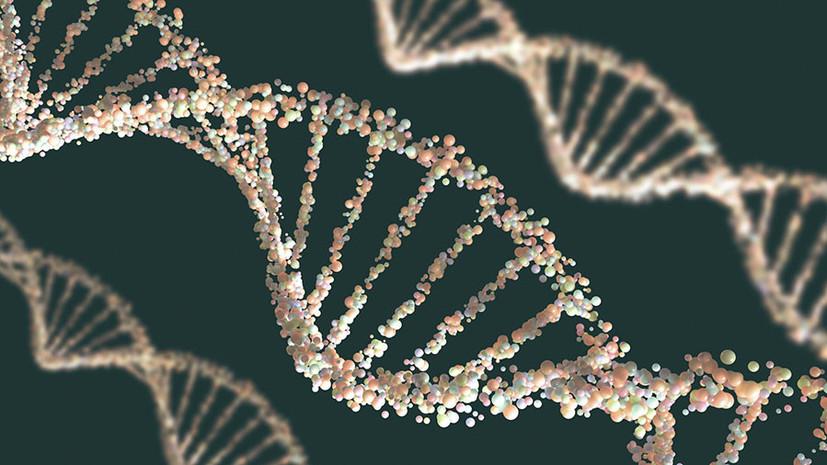 Генетическая уникальность: учёные обнаружили различие ряда белков ДНК человека и животных