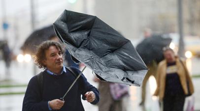 Источник: восемь человек пострадали в Москве из-за ветра