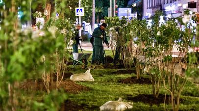 В Москве высадили более 19 тысяч кустарников этой весной