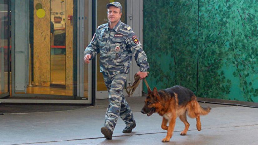 Полиция в Москве проверяет сообщения о минировании метро и парков