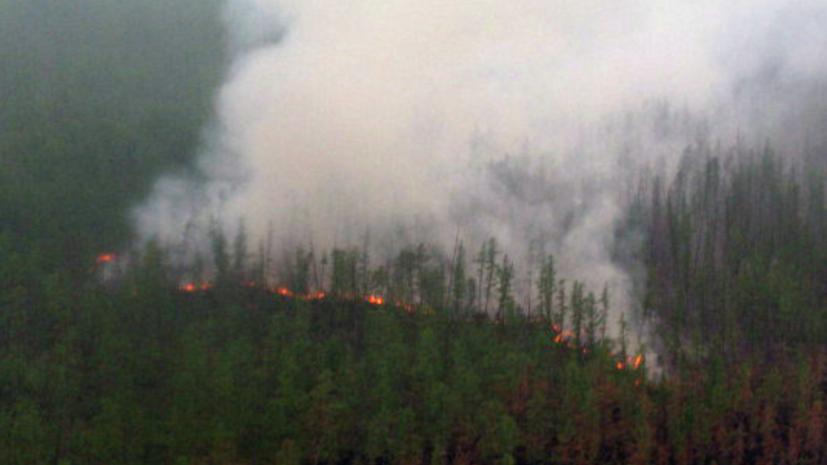В Якутии заявили об уничтожении огнём более 80 тысяч гектаров леса