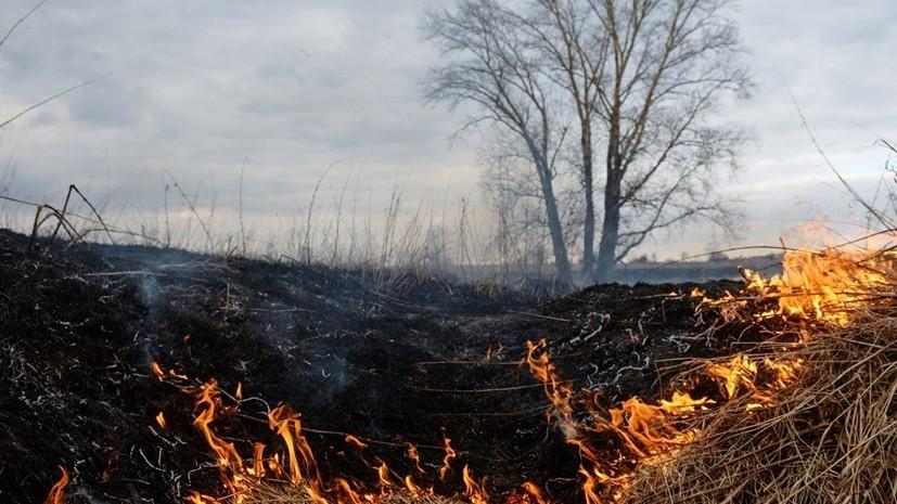В Якутии заявили об уничтожении огнём почти 200 тысяч гектаров леса