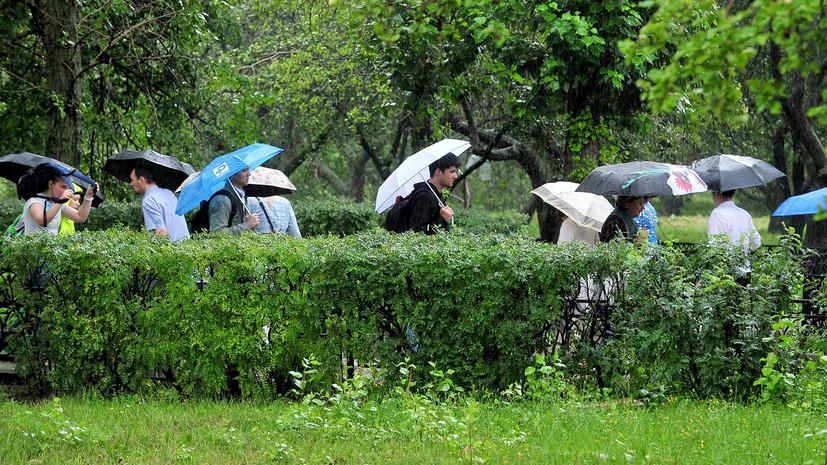 «Будет напоминать осень»: какую погоду ждать жителям Центральной России на следующей неделе