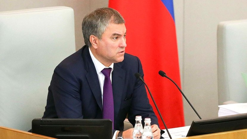 Володин и Гречаная договорились о диалоге между парламентами России и Молдавии