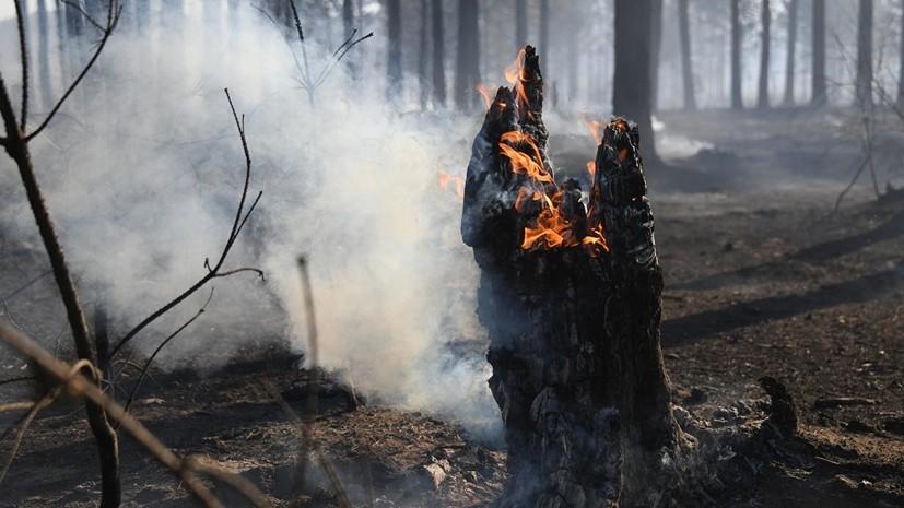 В Оренбуржье начался природный пожар на границе с Казахстаном