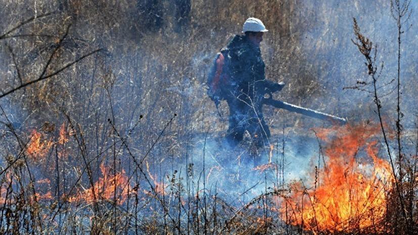 В Оренбургской области ликвидировали природный пожар