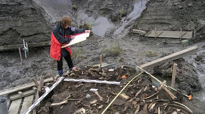 Участок, где были найдены зубы древнего человека, — Янская стоянка