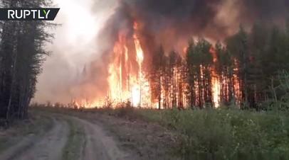 Стена пламени: очевидец заснял мощный лесной пожар в Якутии