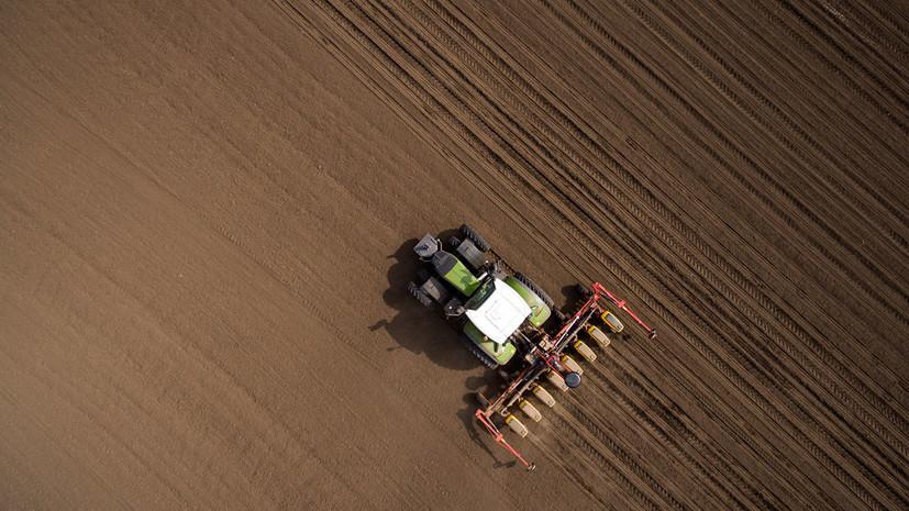 В Подмосковье начали принимать заявки на гранты с целью поддержки начинающих фермеров