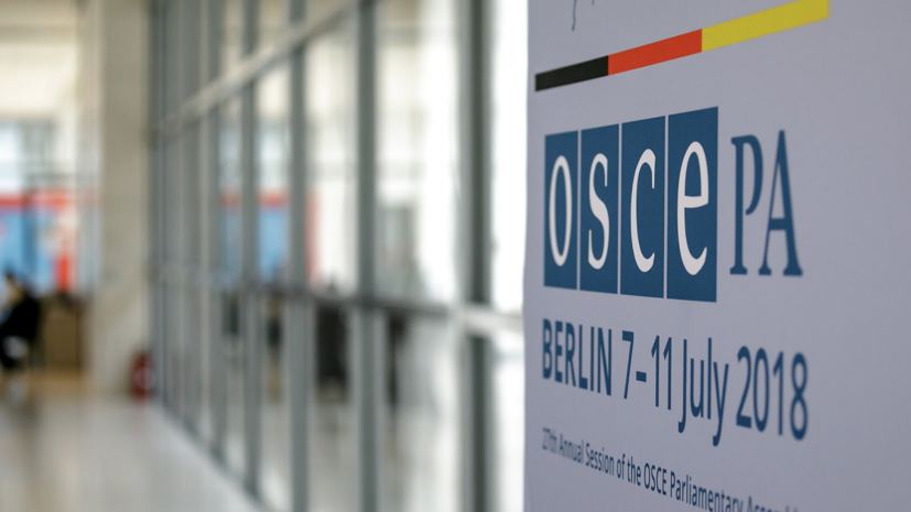 Russia proposed to OSCE PA to take on the fight against the
