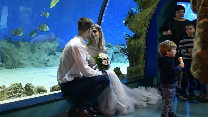 На новых площадках для регистрации брака в Москве поженились более тысячи пар