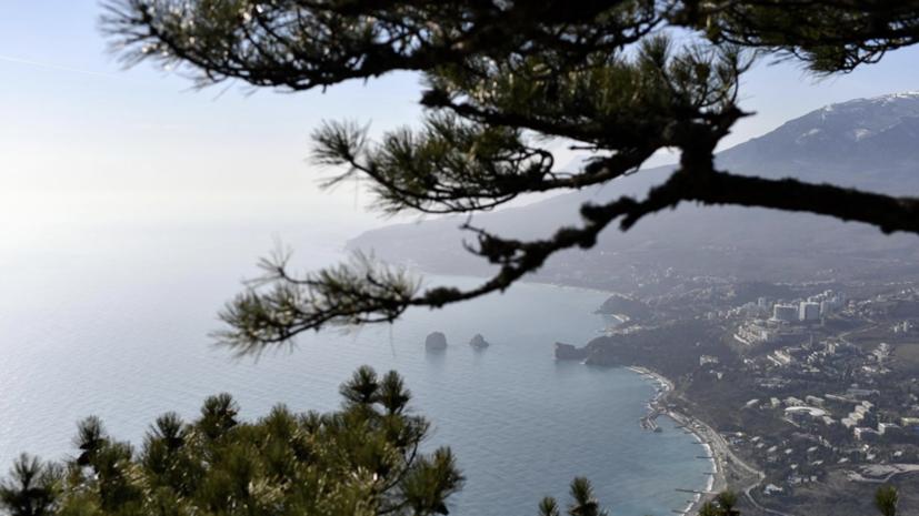 В Крыму заявили о росте поступлений от специальных налоговых режимов на 50% за два года
