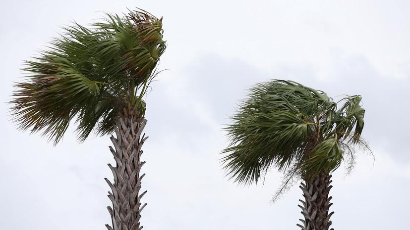 Ураган «Барри» обрушился на штат Луизиана