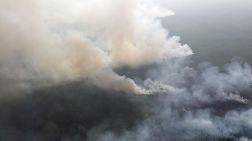 Площадь лесных пожаров в Сибири превысила 1,6 млн га