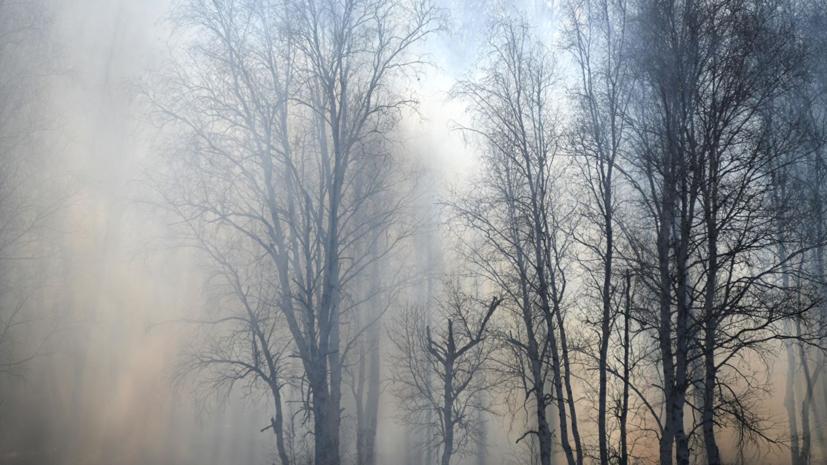 МЧС усилило группировку в Красноярском крае в связи с лесными пожарами