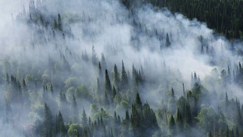 Минобороны создало штаб по тушению пожаров в Красноярском крае