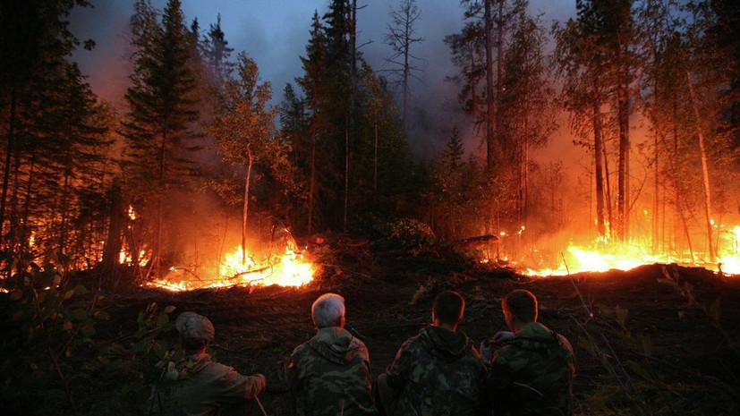Медведев потребовал тушить пожары в Сибири «не из окон министерств»