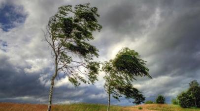 Спасатели предупредили о штормовом ветре в Красноярском крае и Хакасии