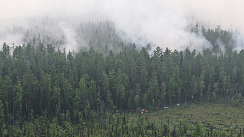СК возбудил дело из-за лесных пожаров в Красноярском крае