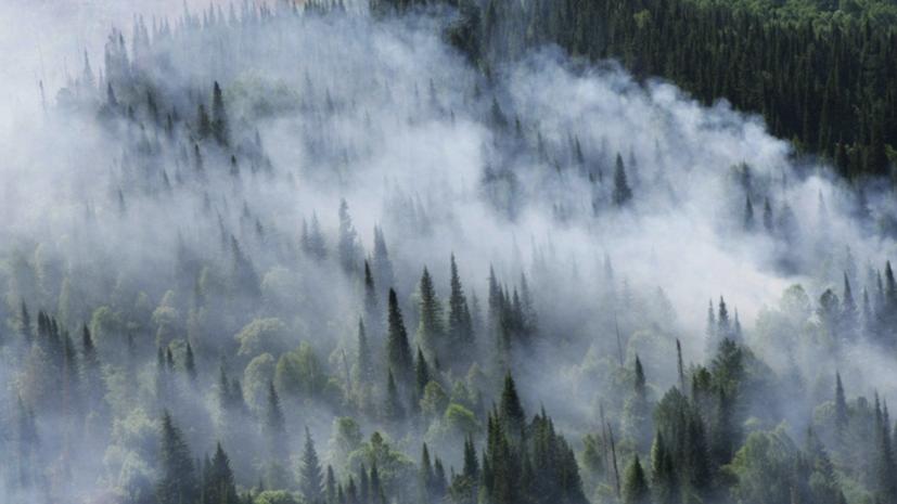 МЧС: площадь лесных пожаров в Якутии превышает 1,2 млн га