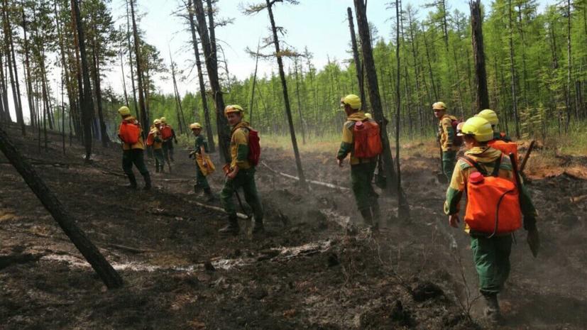 В Генпрокуратуре заявили о случаях намеренного поджога леса в Сибири