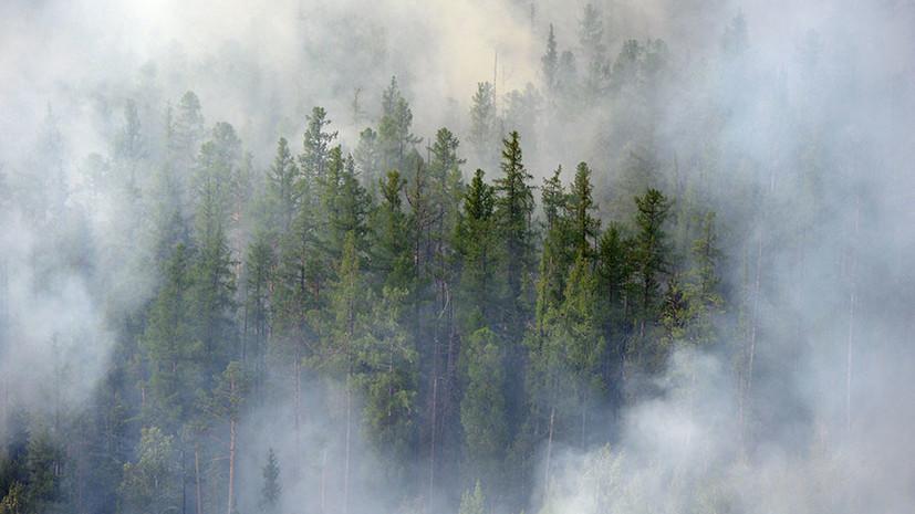 Правительство выделит почти 6 млрд рублей на тушение лесных пожаров